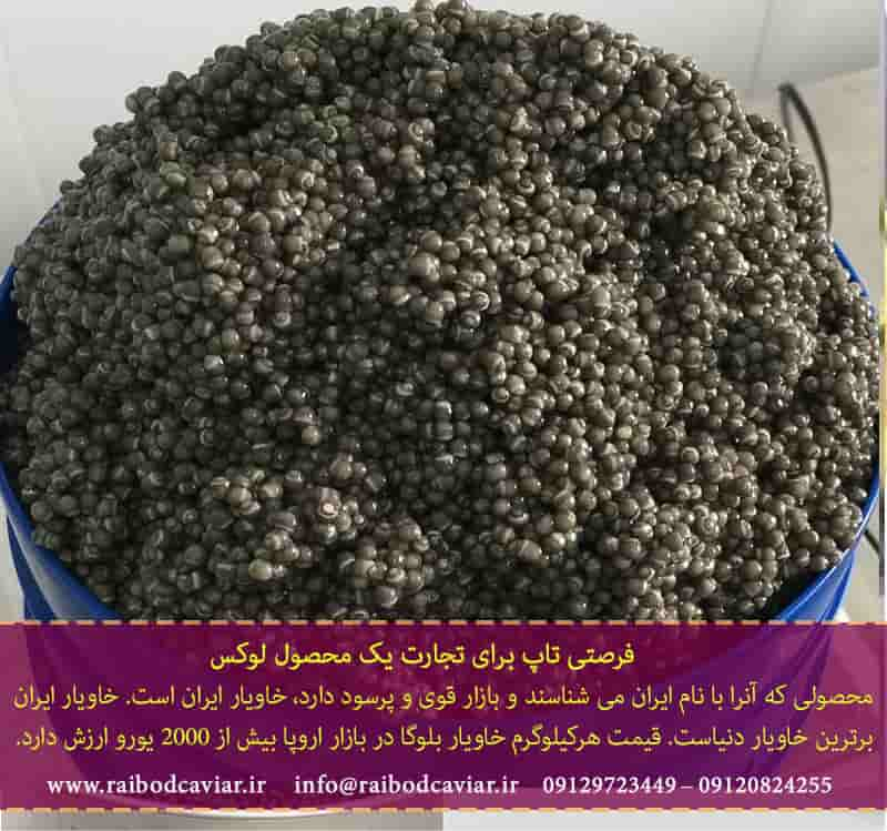 تولید خاویار بلوگا امپریال در ایران