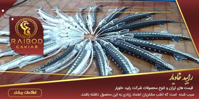 بازار فروش ماهی خاویاری
