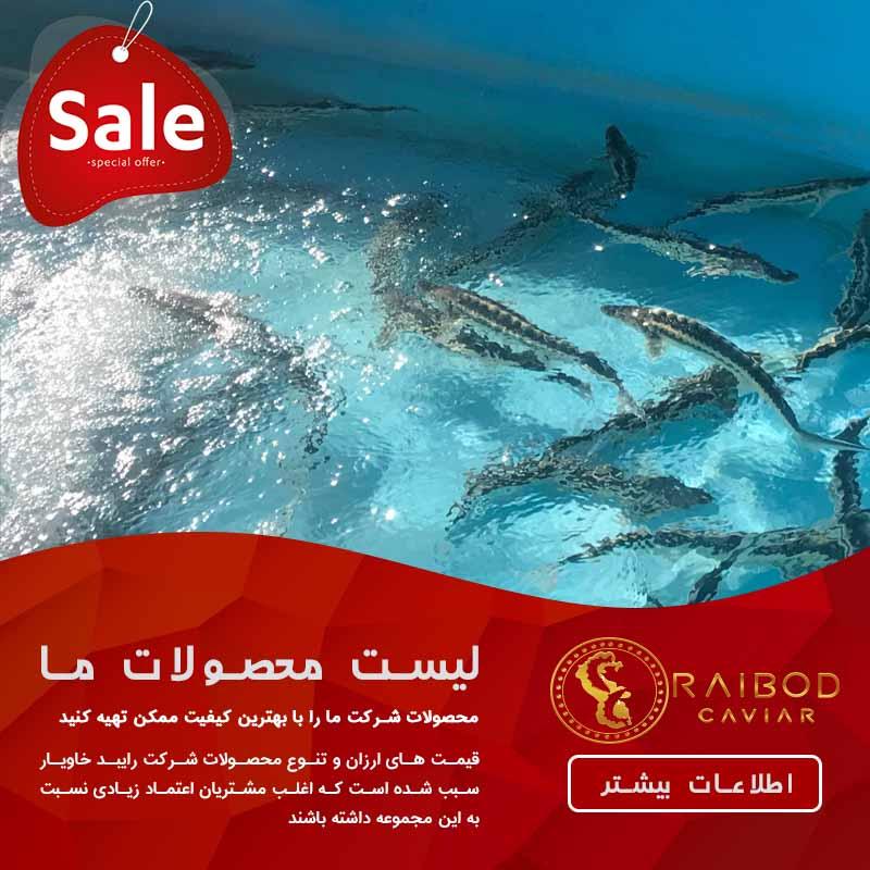 سود پرورش ماهی خاویار